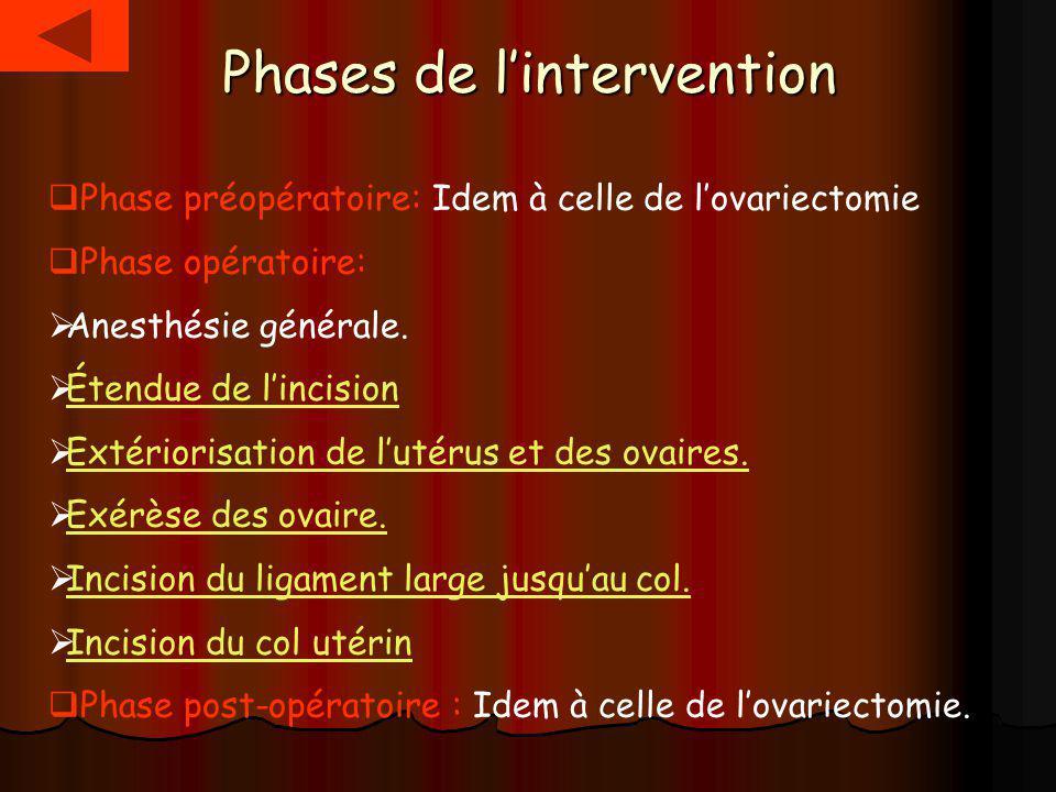 Phases de l'intervention