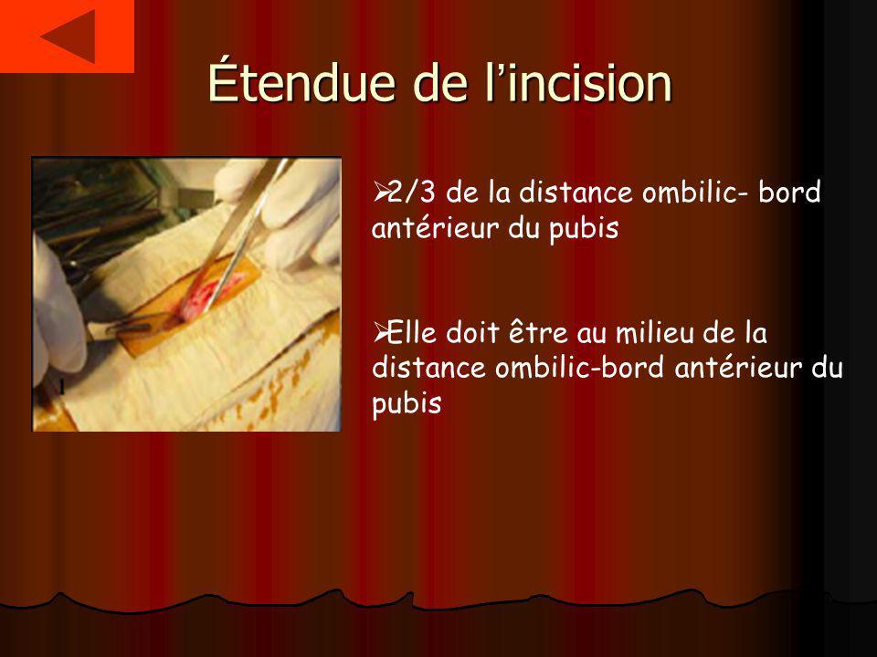 Étendue de l'incision 2/3 de la distance ombilic- bord antérieur du pubis.