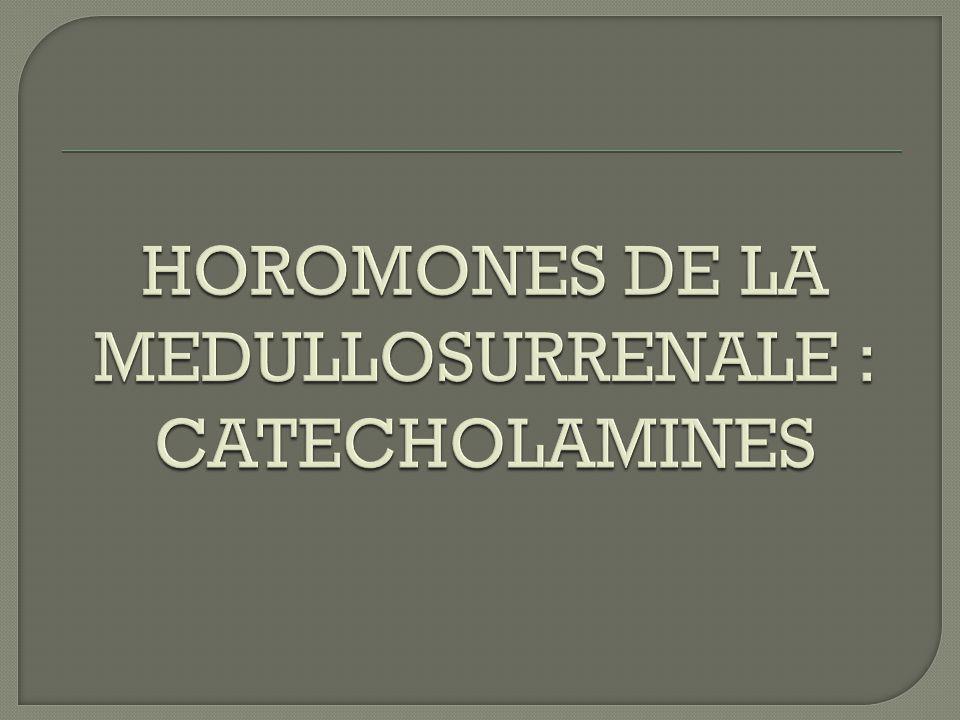 HOROMONES DE LA MEDULLOSURRENALE : CATECHOLAMINES
