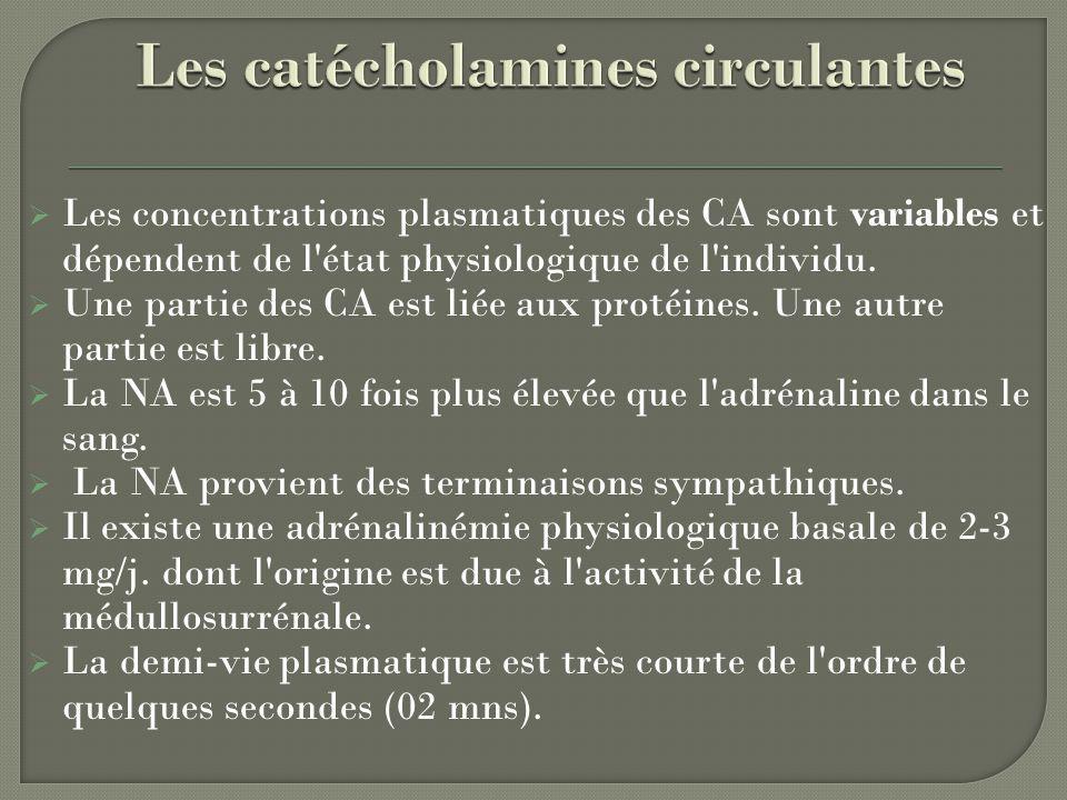 Les catécholamines circulantes