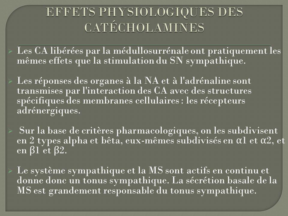 EFFETS PHYSIOLOGIQUES DES CATÉCHOLAMINES