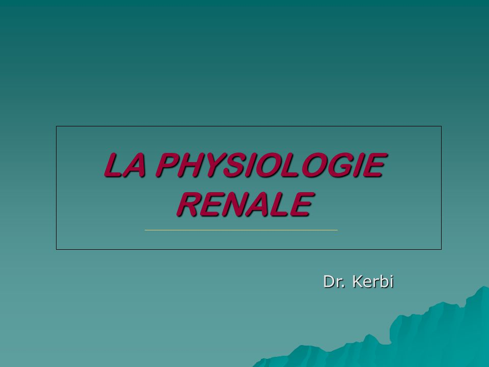 LA PHYSIOLOGIE RENALE Dr. Kerbi