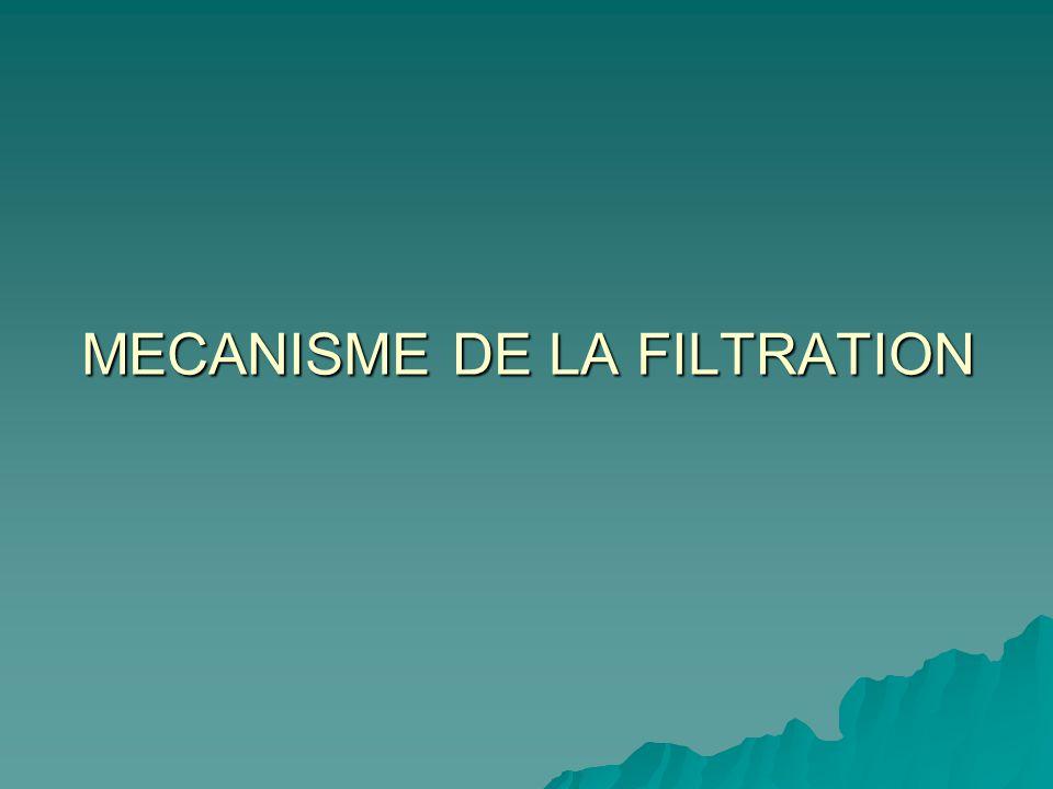 MECANISME DE LA FILTRATION