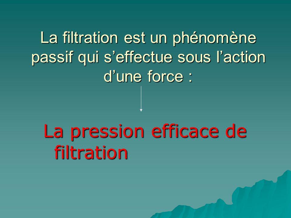La pression efficace de filtration
