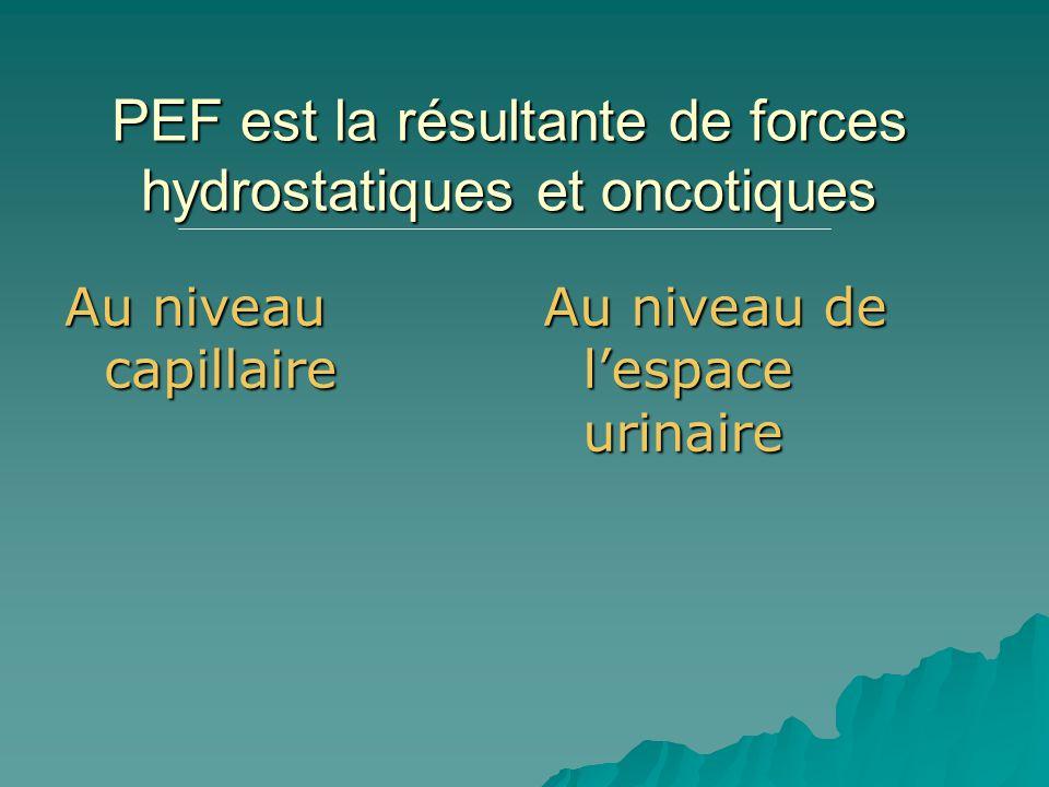 PEF est la résultante de forces hydrostatiques et oncotiques
