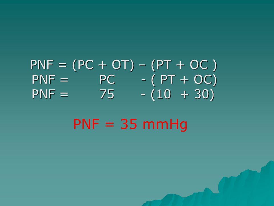 PNF = (PC + OT) – (PT + OC ) PNF = PC - ( PT + OC) PNF = 75 - (10 + 30)