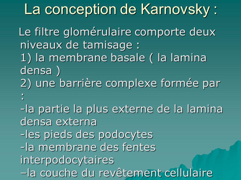 La conception de Karnovsky :