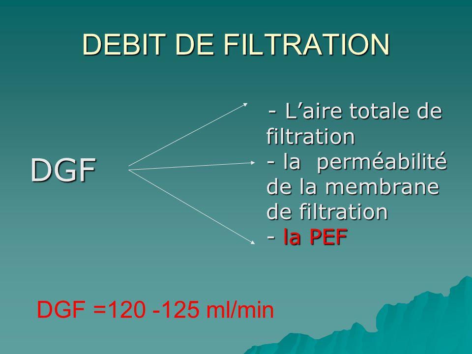 DGF DEBIT DE FILTRATION DGF =120 -125 ml/min