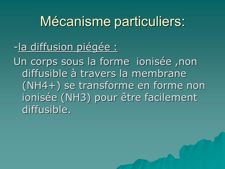 Mécanisme particuliers: