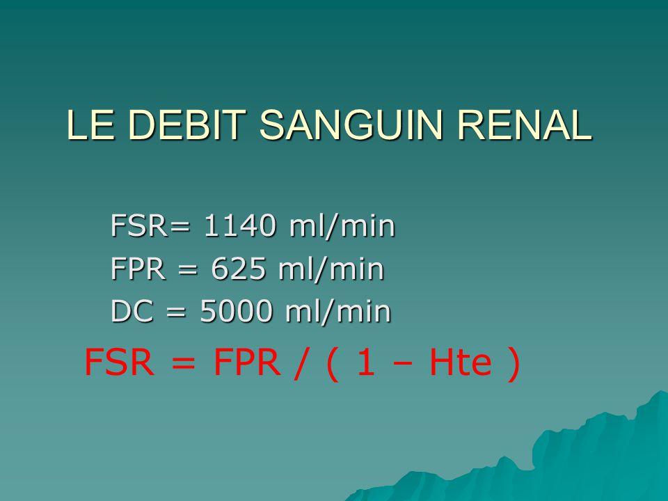 LE DEBIT SANGUIN RENAL FSR = FPR / ( 1 – Hte ) FSR= 1140 ml/min