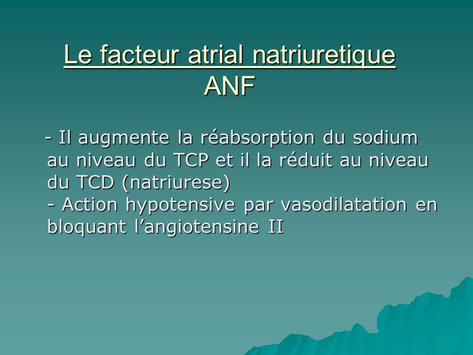 Le facteur atrial natriuretique ANF