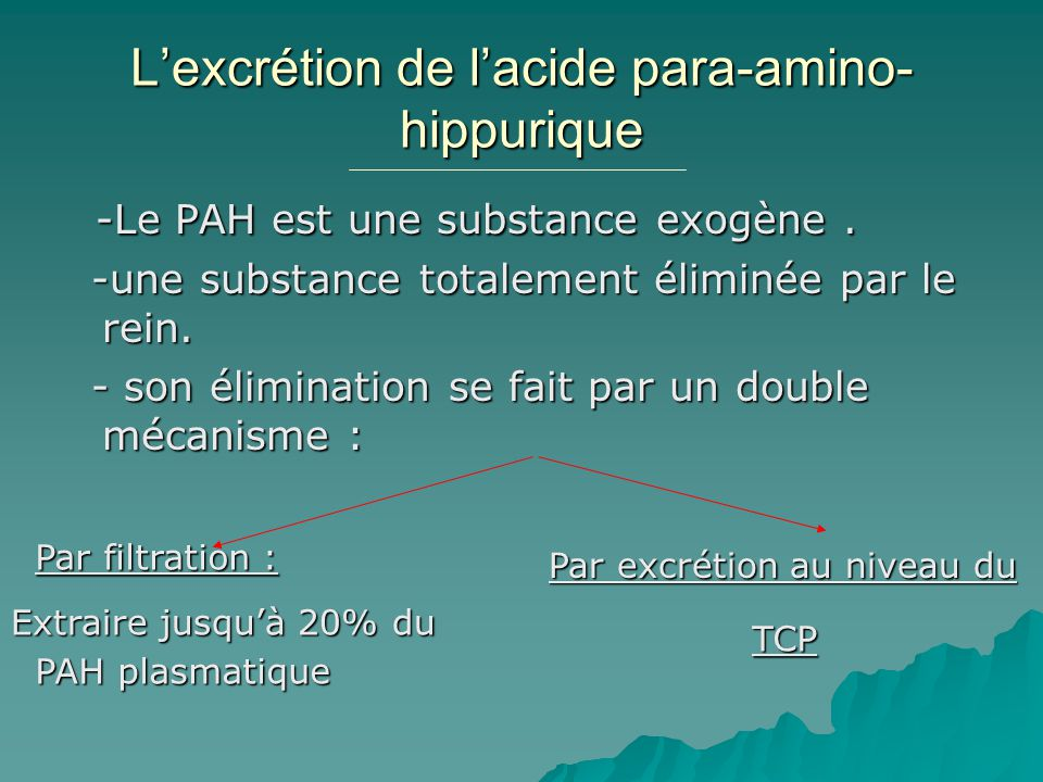 L'excrétion de l'acide para-amino-hippurique