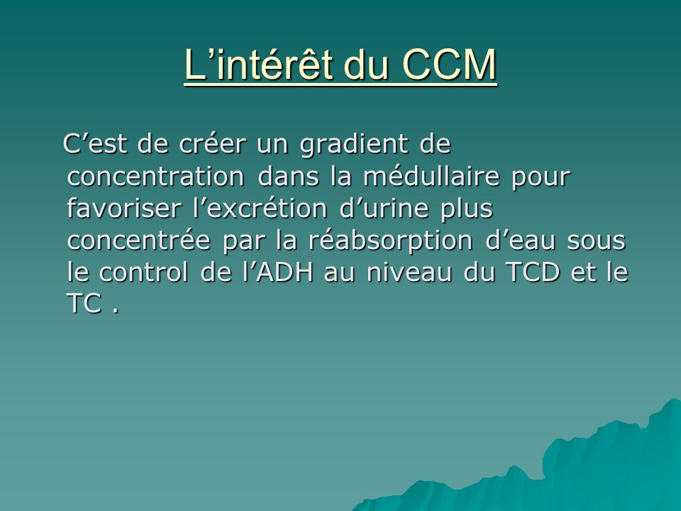 L'intérêt du CCM