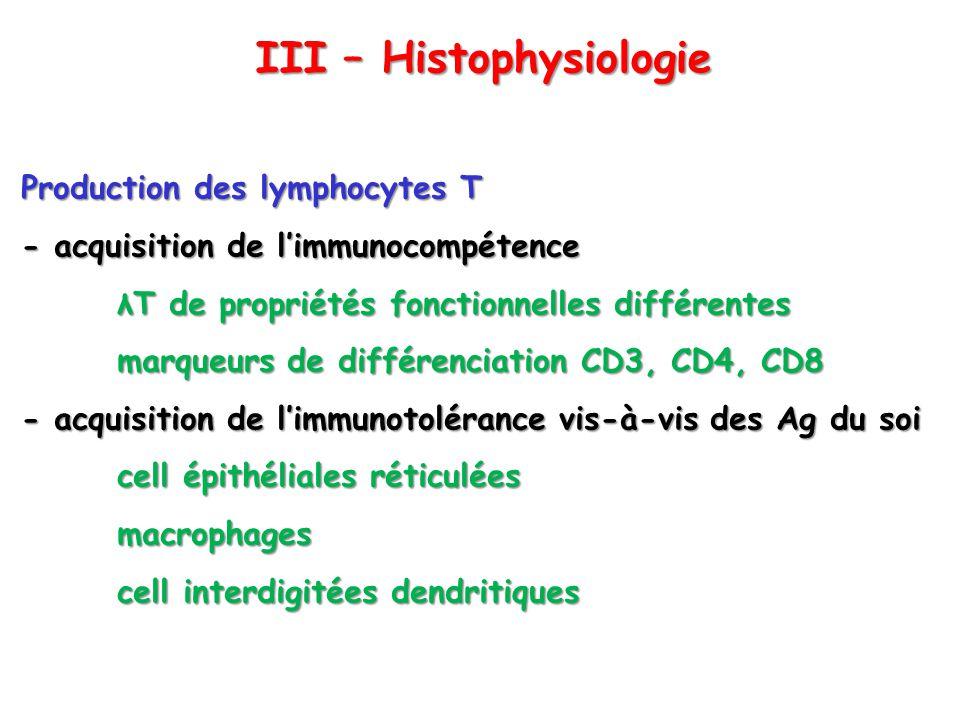 III – Histophysiologie