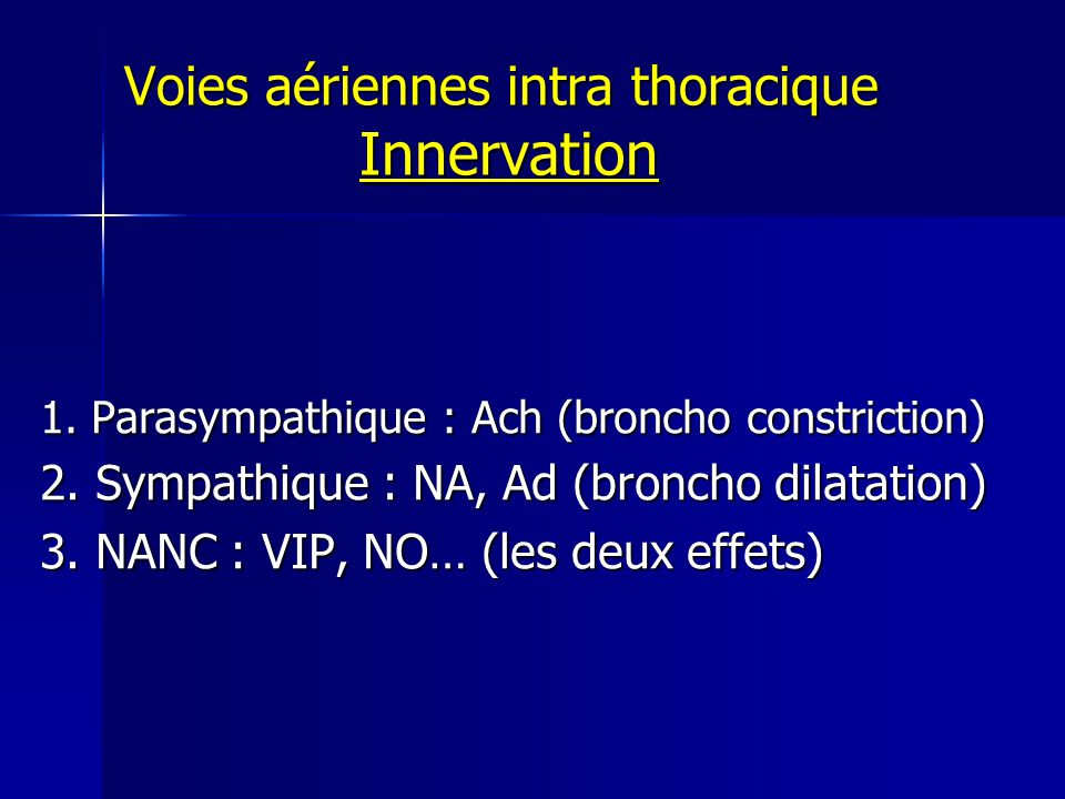 Voies aériennes intra thoracique Innervation