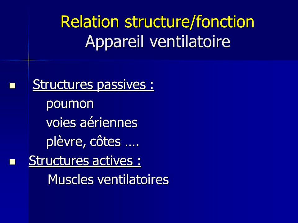Relation structure/fonction Appareil ventilatoire