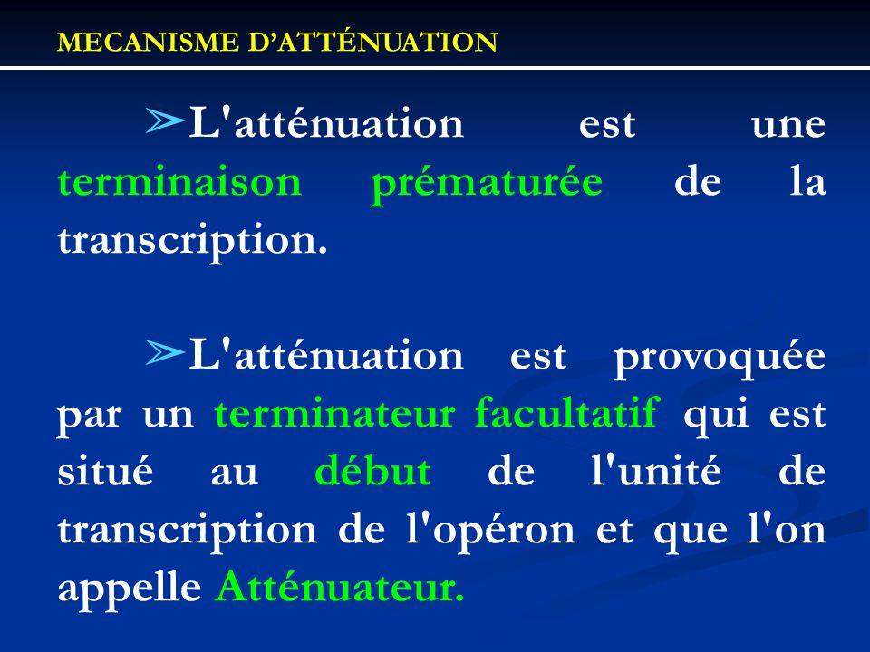 MECANISME D'ATTÉNUATION