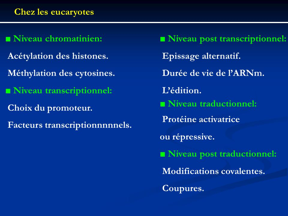 Chez les eucaryotes ■ Niveau chromatinien:  Acétylation des histones.  Méthylation des cytosines.