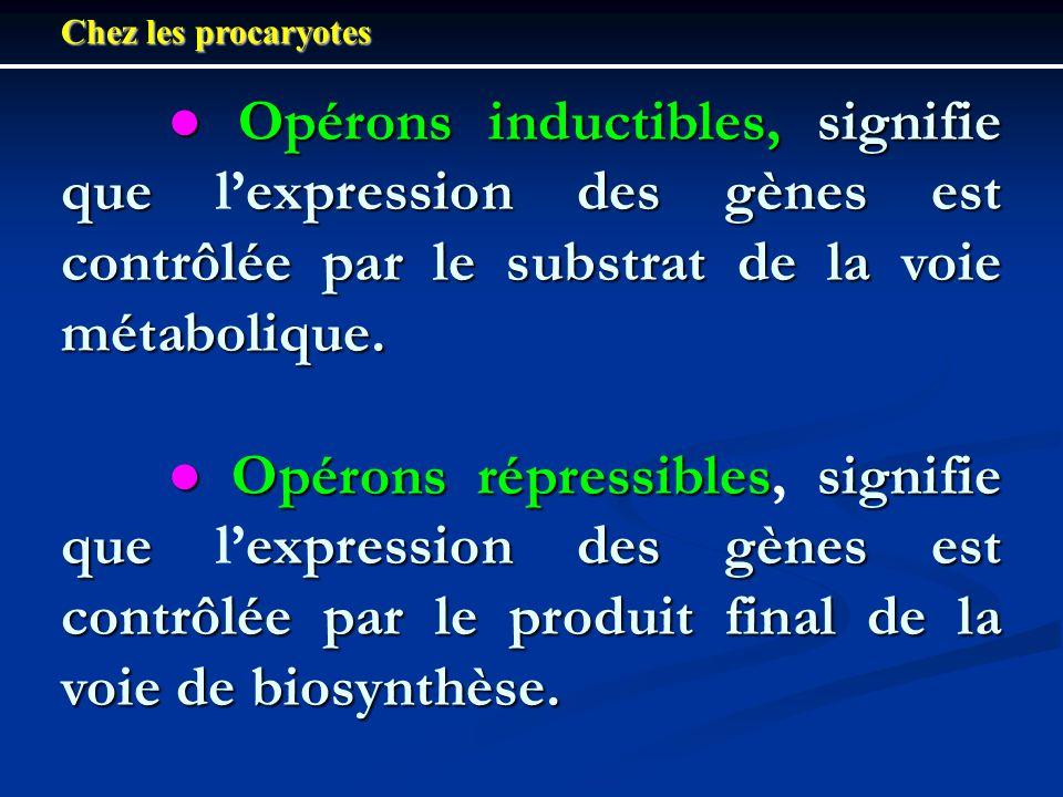 Chez les procaryotes ● Opérons inductibles, signifie que l'expression des gènes est contrôlée par le substrat de la voie métabolique.