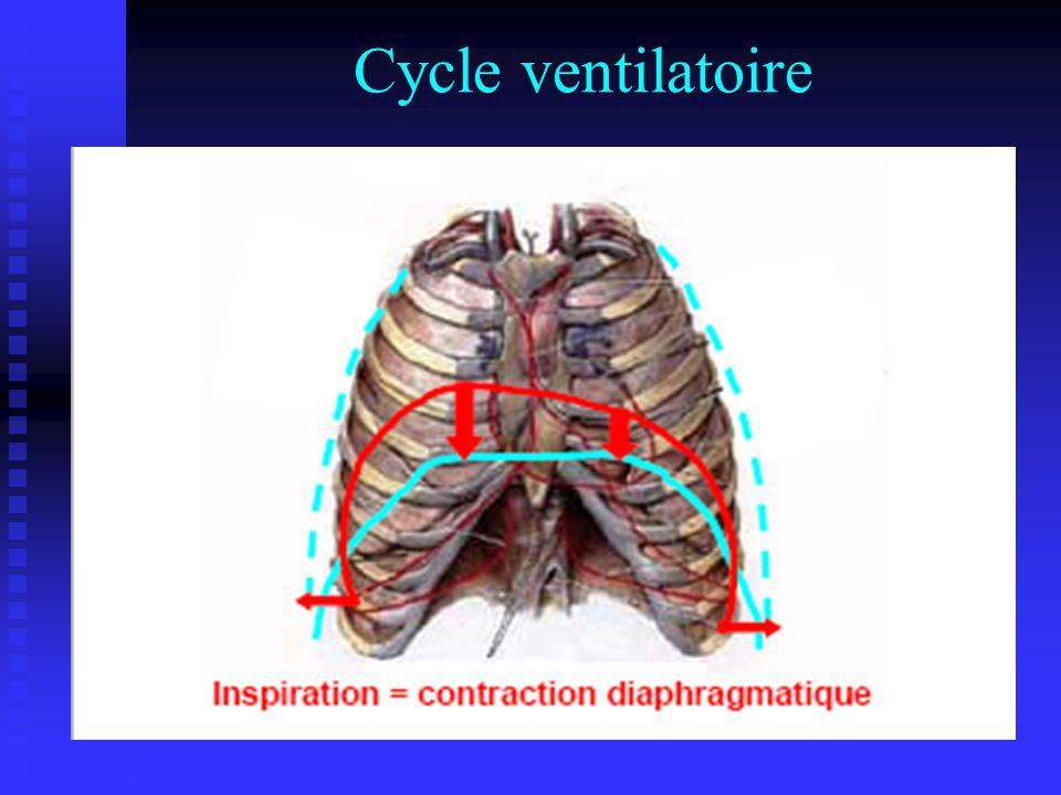 Cycle ventilatoire