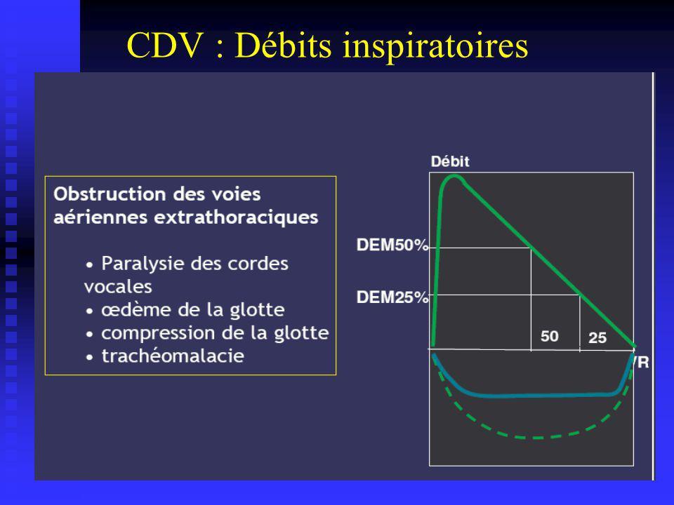 CDV : Débits inspiratoires