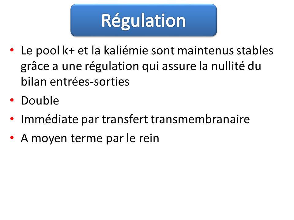 Régulation Le pool k+ et la kaliémie sont maintenus stables grâce a une régulation qui assure la nullité du bilan entrées-sorties.