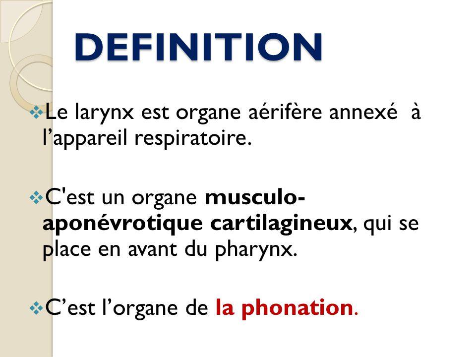 DEFINITION Le larynx est organe aérifère annexé à l'appareil respiratoire.