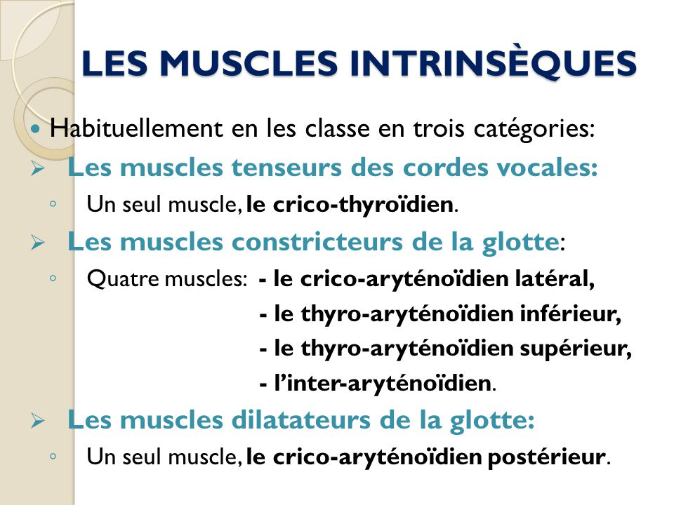 LES MUSCLES INTRINSÈQUES
