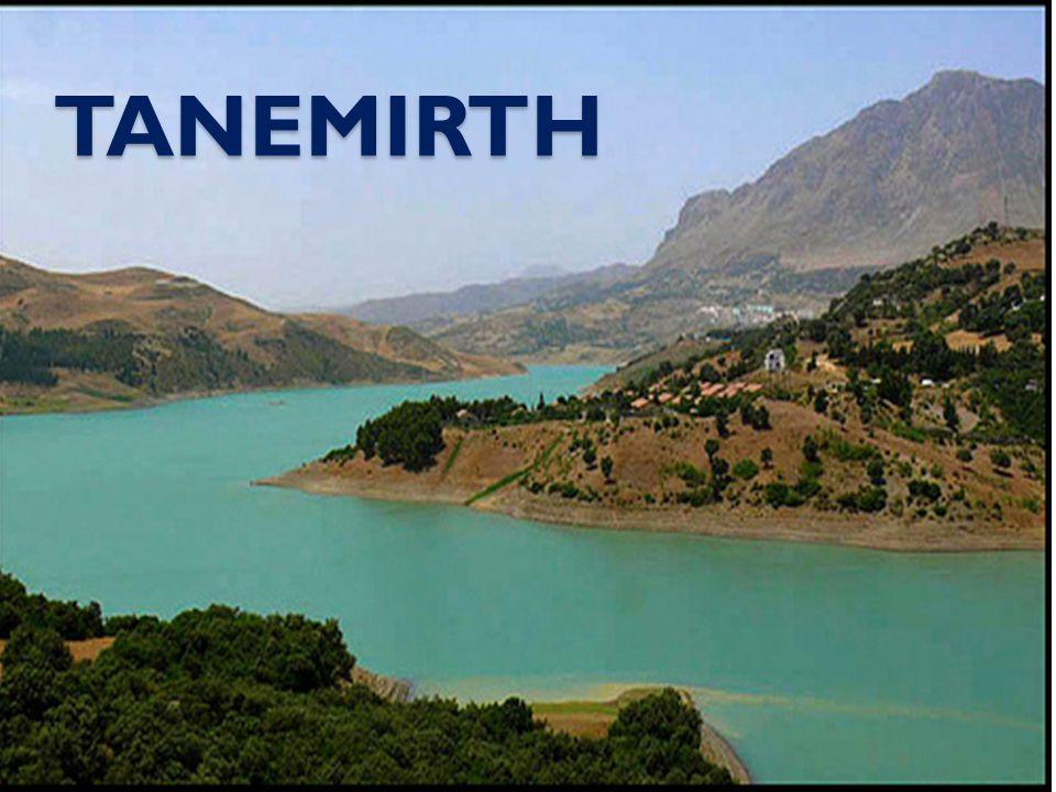 TANEMIRTH