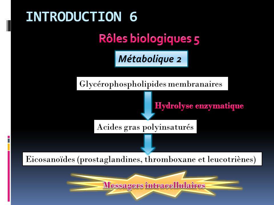 INTRODUCTION 6 Rôles biologiques 5 Métabolique 2
