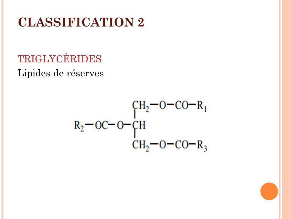 CLASSIFICATION 2 TRIGLYCÈRIDES Lipides de réserves
