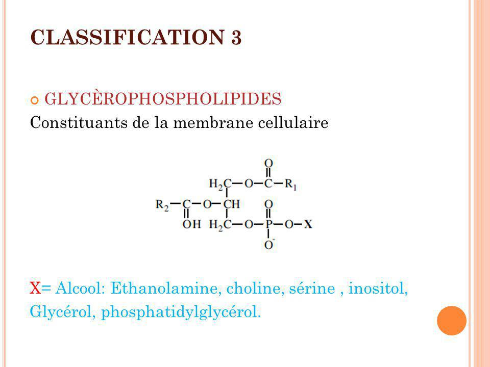 CLASSIFICATION 3 GLYCÈROPHOSPHOLIPIDES