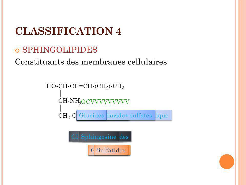 CLASSIFICATION 4 SPHINGOLIPIDES Constituants des membranes cellulaires