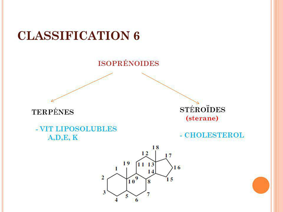 CLASSIFICATION 6 ISOPRÉNOIDES STÉROÏDES TERPÉNES (sterane)
