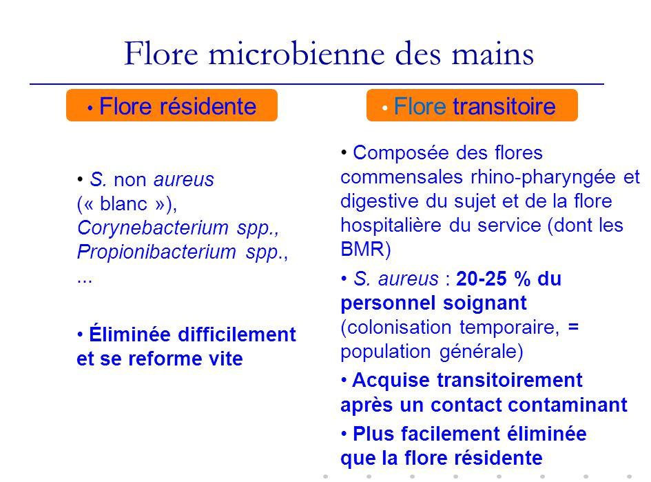 Flore microbienne des mains