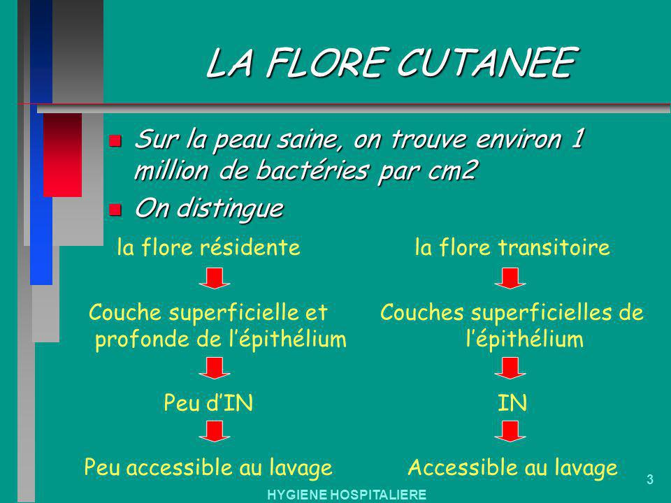 LA FLORE CUTANEE Sur la peau saine, on trouve environ 1 million de bactéries par cm2. On distingue.