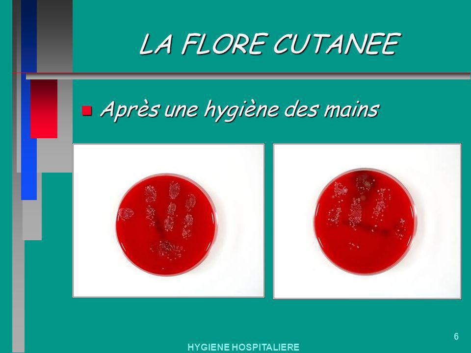 LA FLORE CUTANEE Après une hygiène des mains HYGIENE HOSPITALIERE