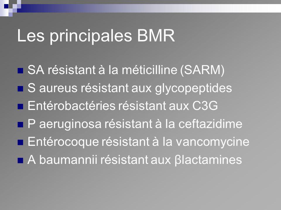 Les principales BMR SA résistant à la méticilline (SARM)