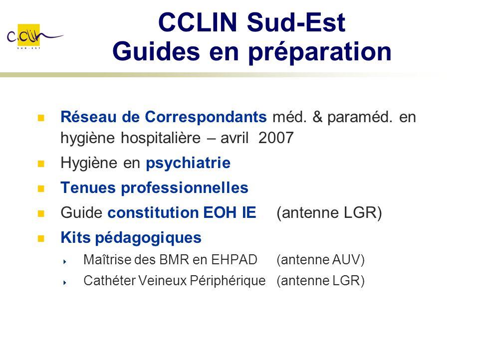 CCLIN Sud-Est Guides en préparation