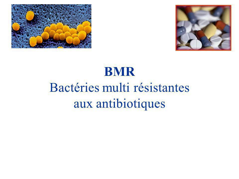 Bactéries multi résistantes aux antibiotiques