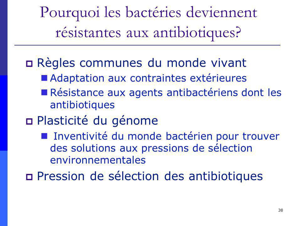 Pourquoi les bactéries deviennent résistantes aux antibiotiques