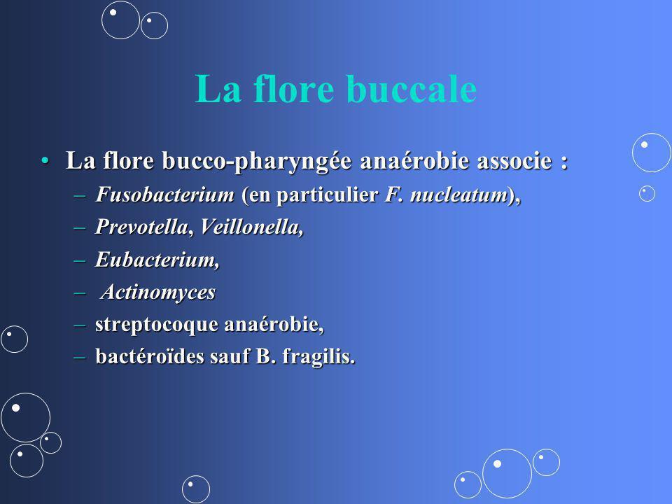 La flore buccale La flore bucco-pharyngée anaérobie associe :
