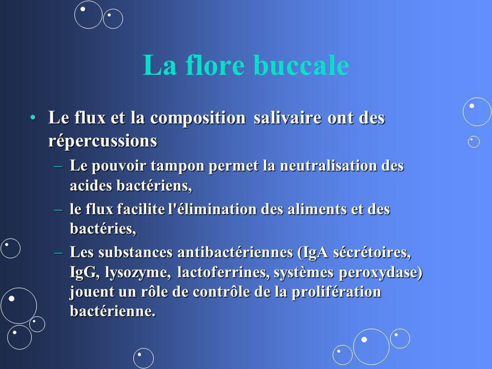 La flore buccale Le flux et la composition salivaire ont des répercussions. Le pouvoir tampon permet la neutralisation des acides bactériens,