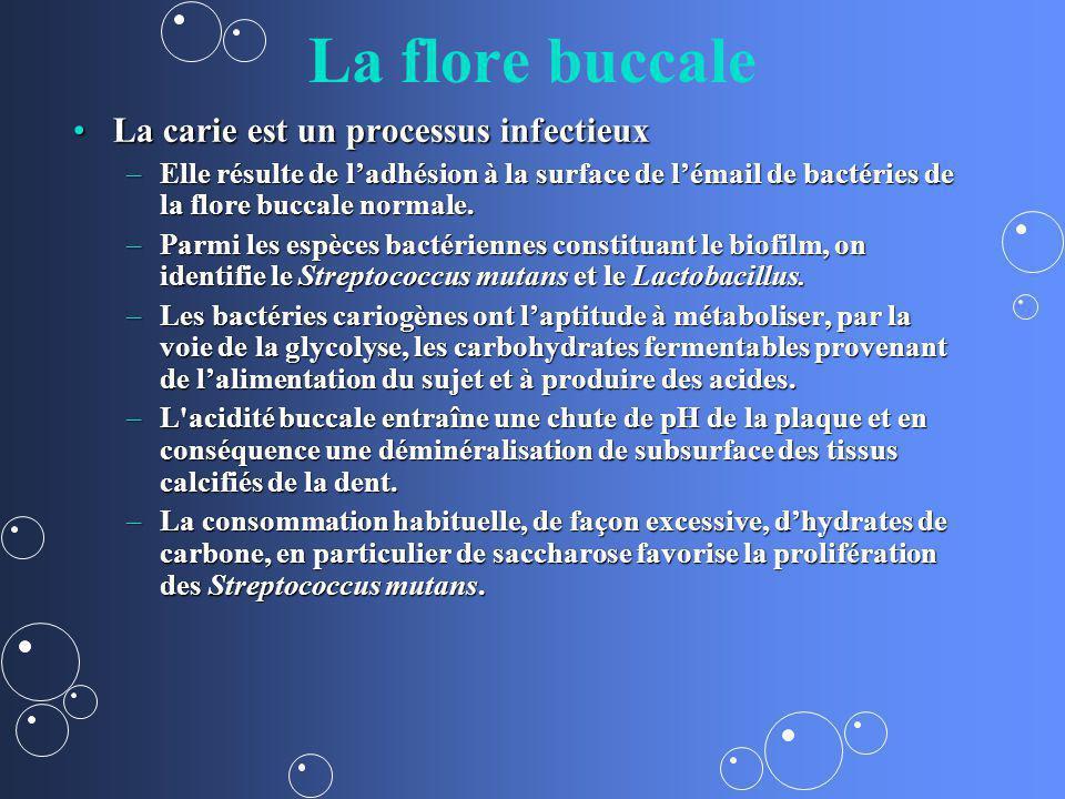 La flore buccale La carie est un processus infectieux