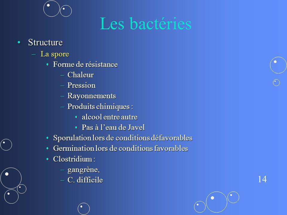 Les bactéries Structure La spore Forme de résistance Chaleur Pression