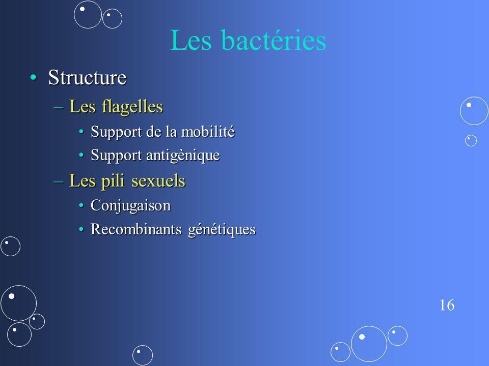 Les bactéries Structure Les flagelles Les pili sexuels