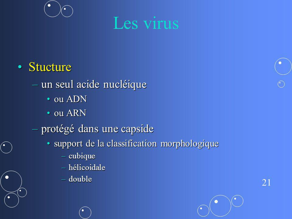 Les virus Stucture un seul acide nucléique protégé dans une capside
