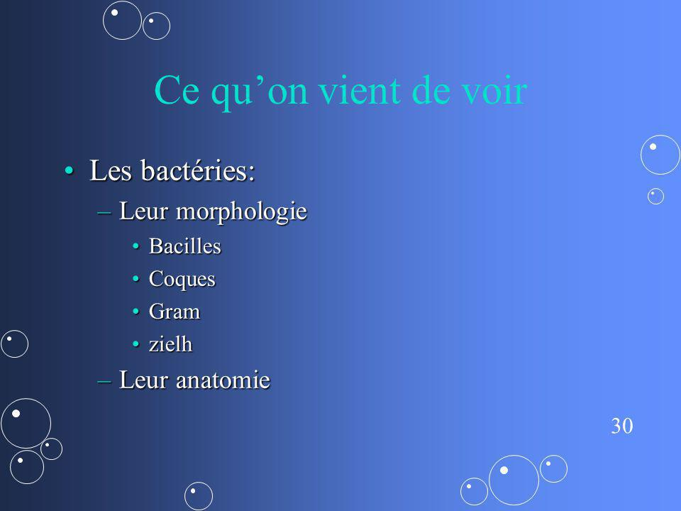 Ce qu'on vient de voir Les bactéries: Leur morphologie Leur anatomie