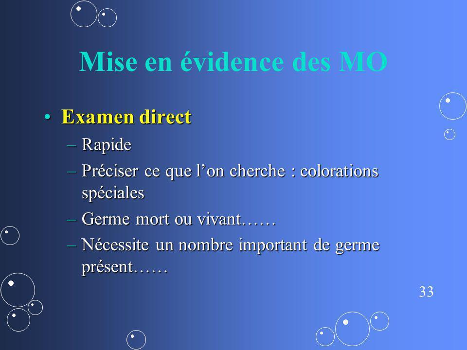 Mise en évidence des MO Examen direct Rapide