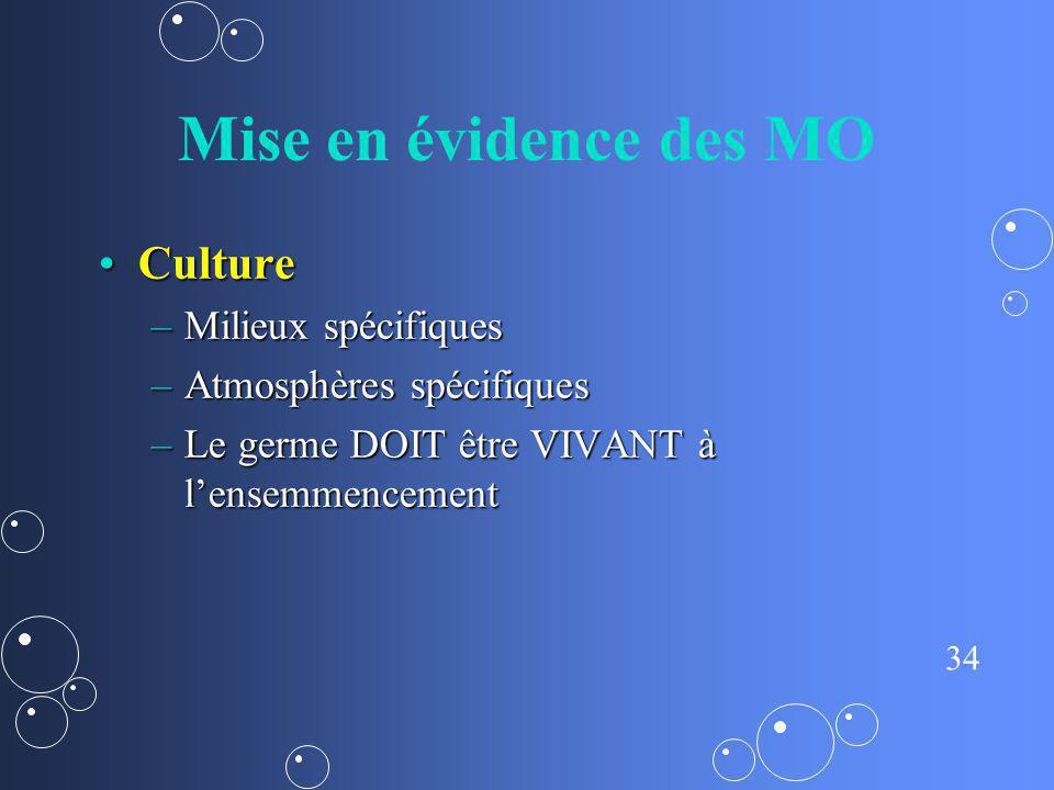 Mise en évidence des MO Culture Milieux spécifiques